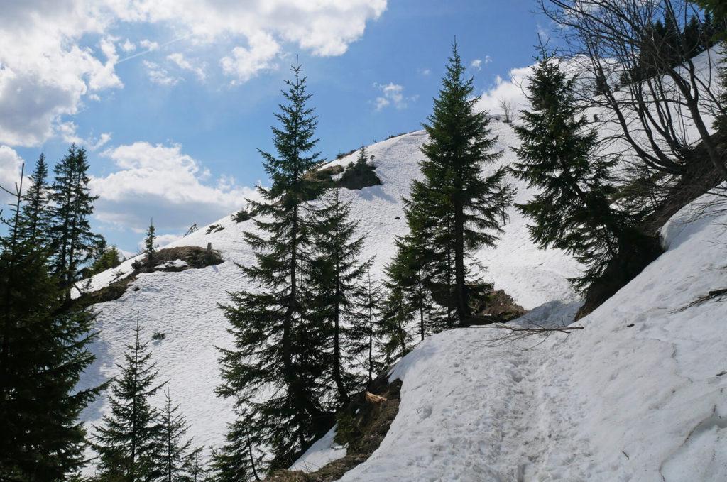 Brunnenkopf April Schnee