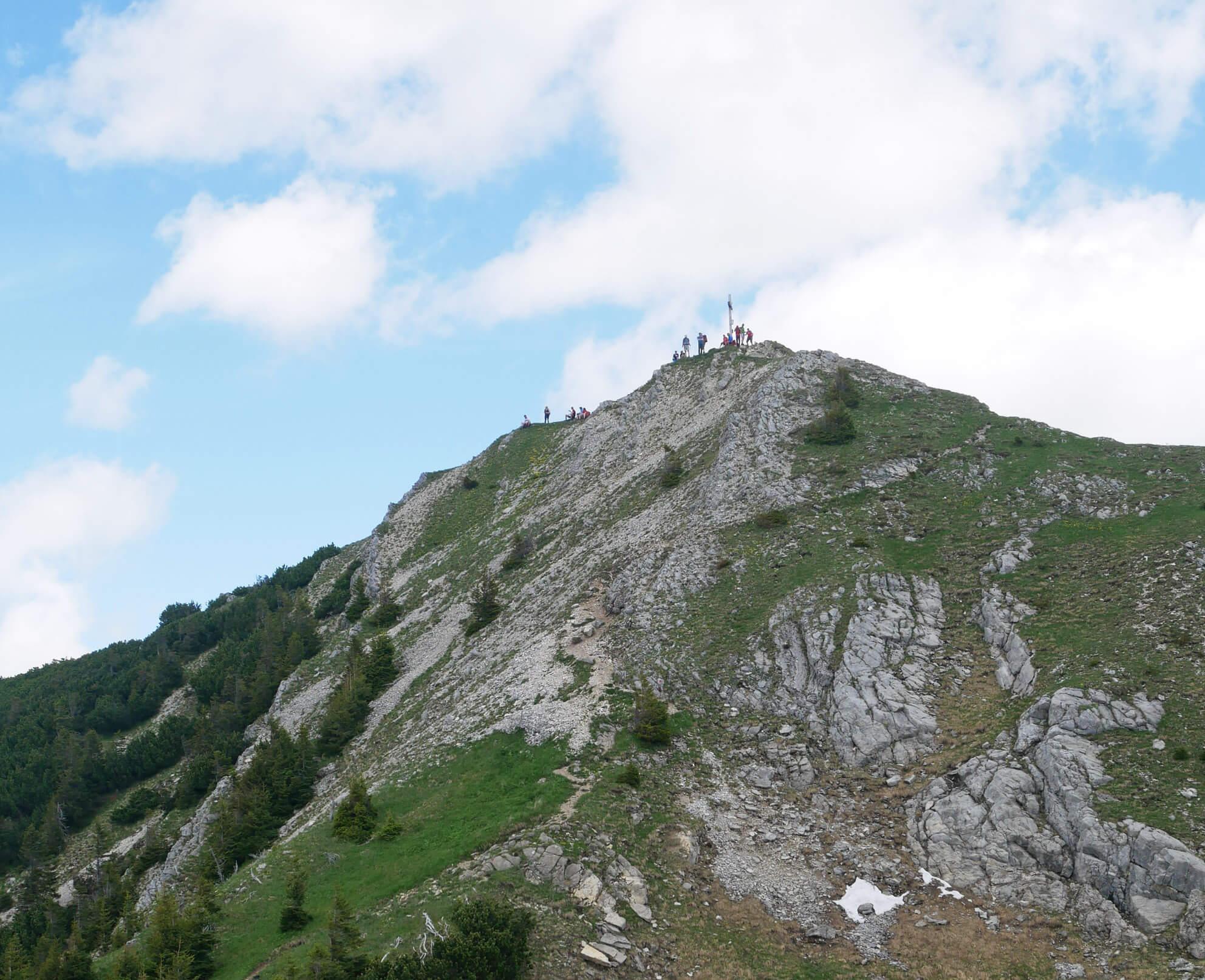 Scheinbergspitze Gipfel