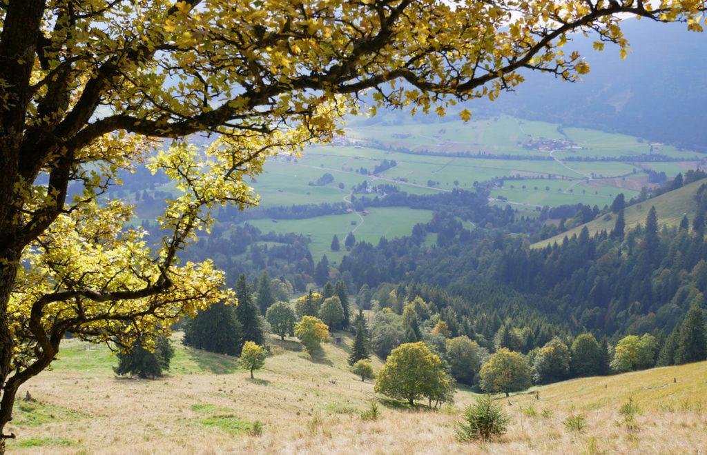 Hörnle Herbst Unterammergau