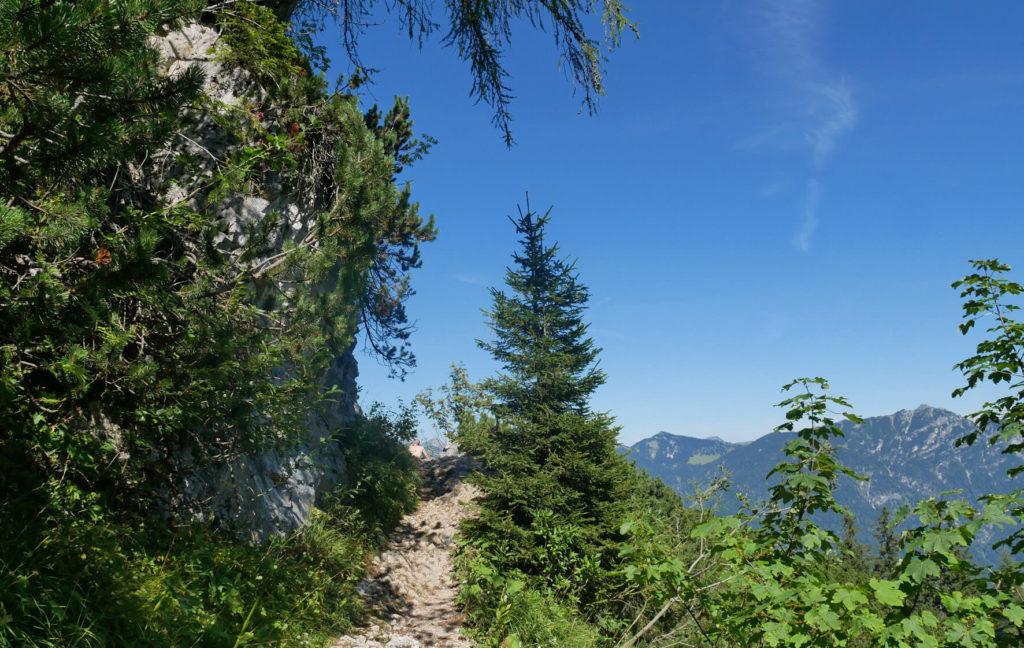 Weg vom Kreuzeck zum Schwarzenberg