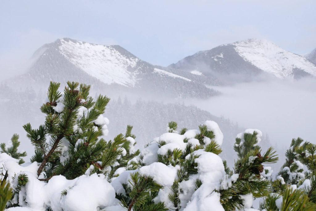 Garmisch Wank Winterwanderung