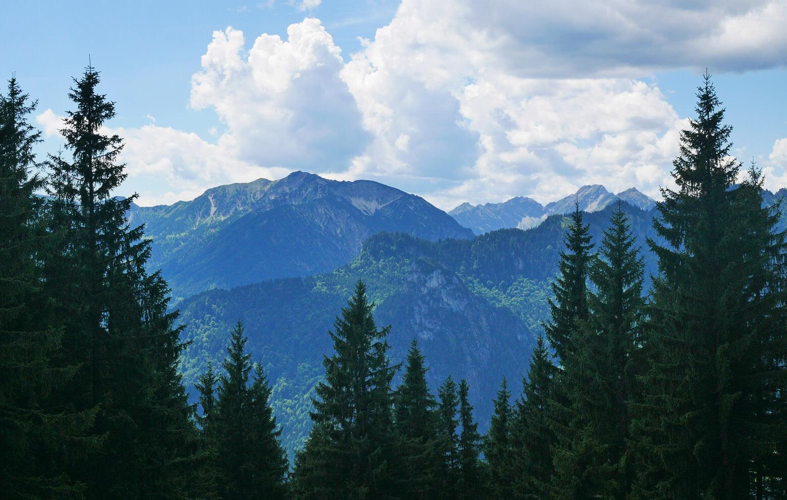 Aufacker Ausblick Ammergauer Alpen