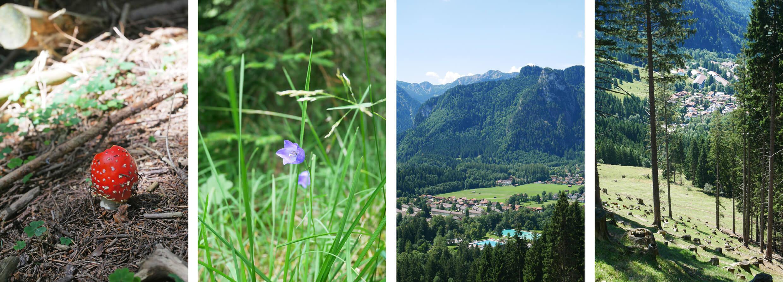 Aufacker Oberammergau Wanderung