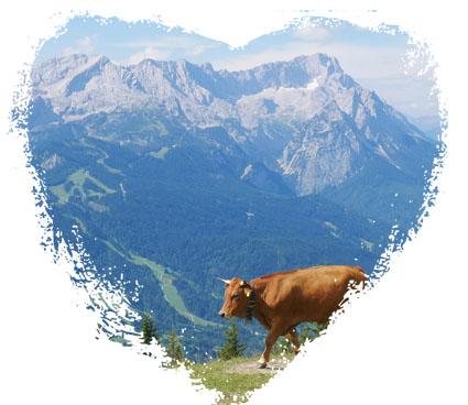 Garmisch Kuh Wank